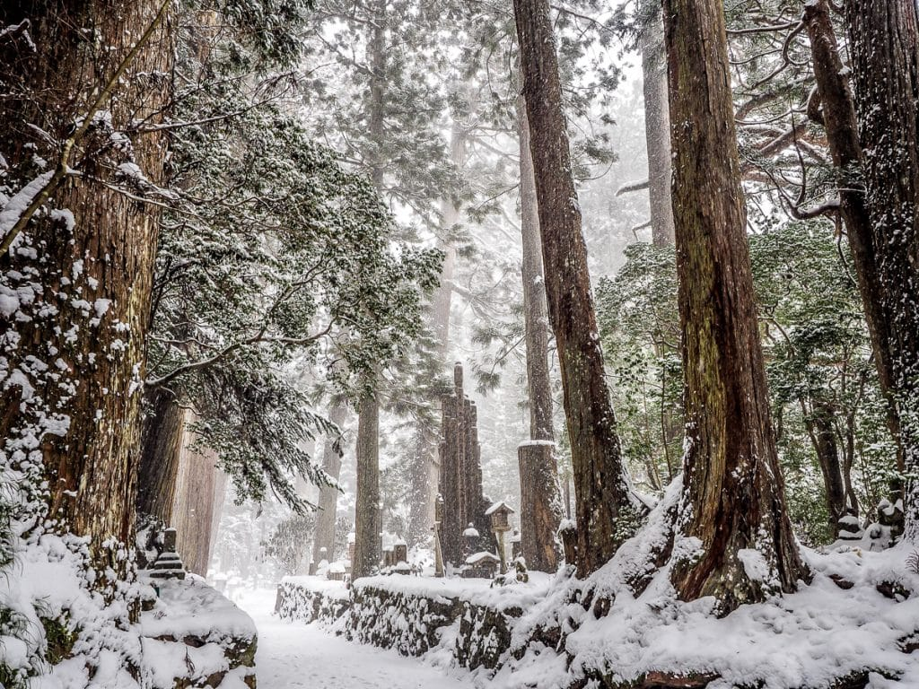 Okunoin cemetery in a snow storm