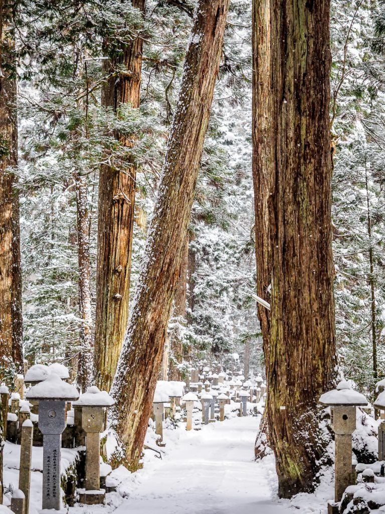 The trail through Okunoin cemetery, Koyasan