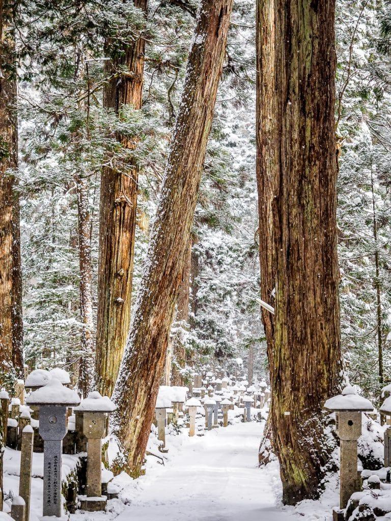 The trail through Okunoin cemetery, Koyasan