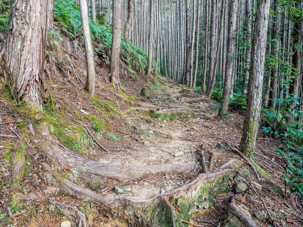 Dainichi-goe route of the Kumano Kodo, from Yunomine to Hongu