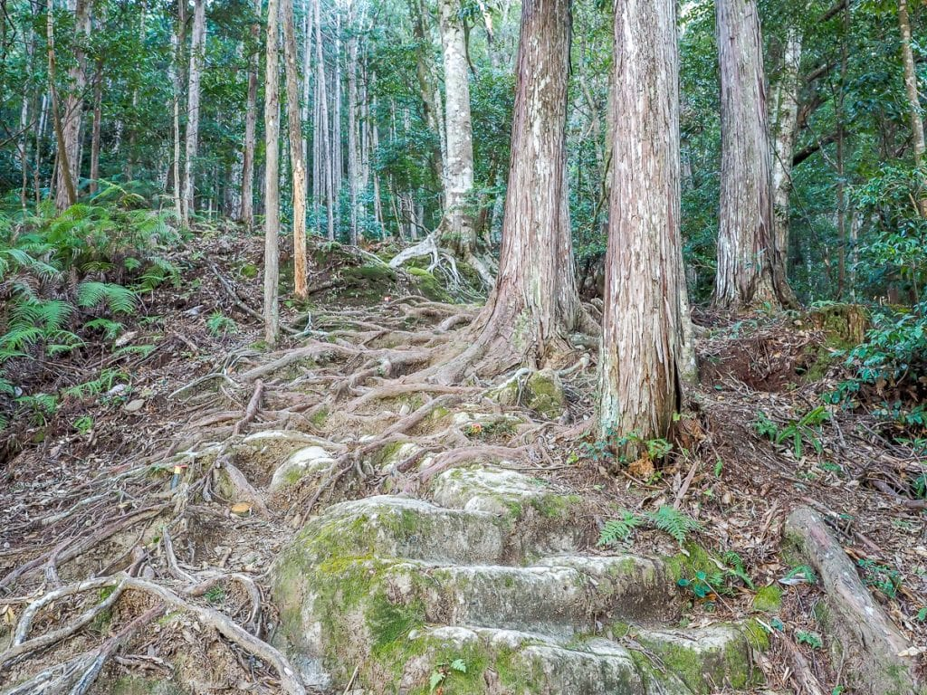 The Dainichi-goe route of the Kumano Kodo, from Hongu to Yunomine