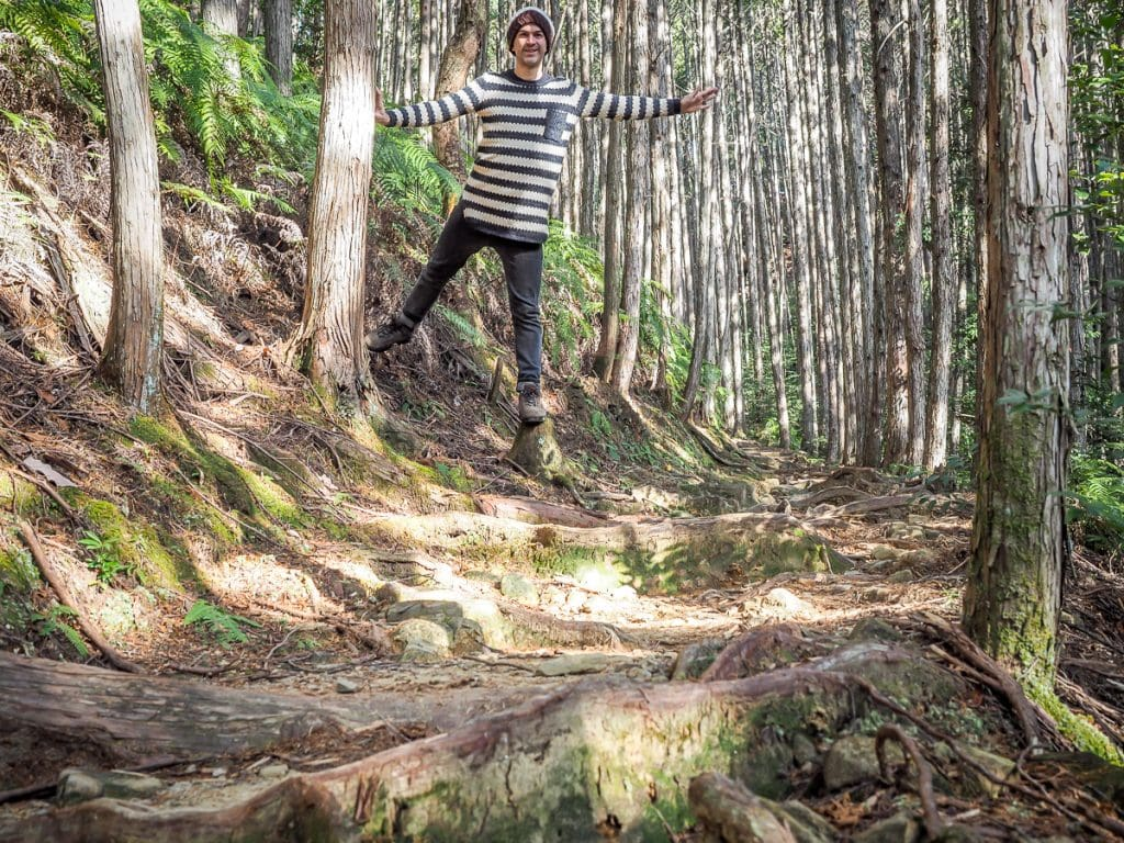 Me on the Dainichi-goe route of the Kumano Kodo walk, from Yunomine to Hongu