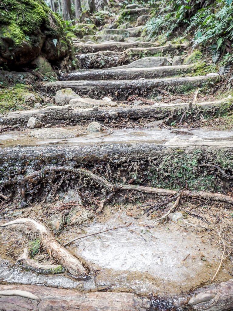 Kumano Kodo trail in winter