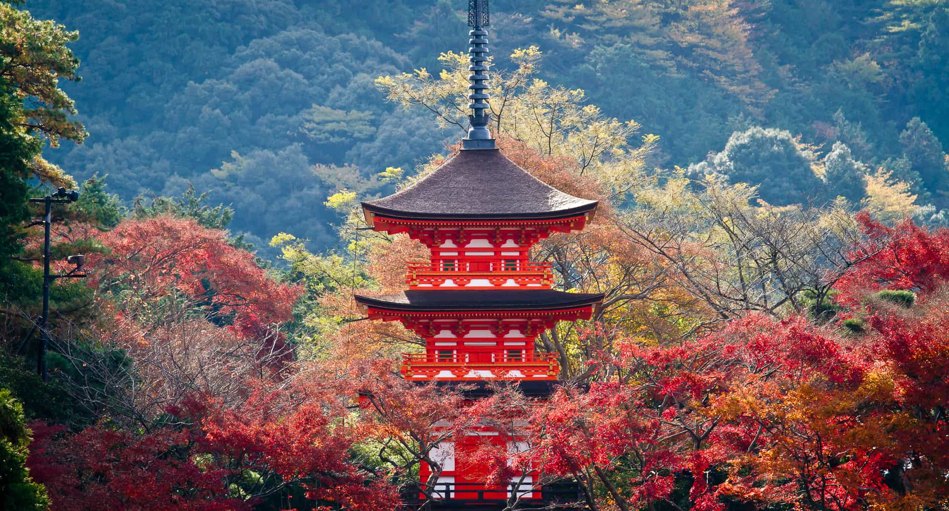 Kyoto 4 day itinerary in autumn