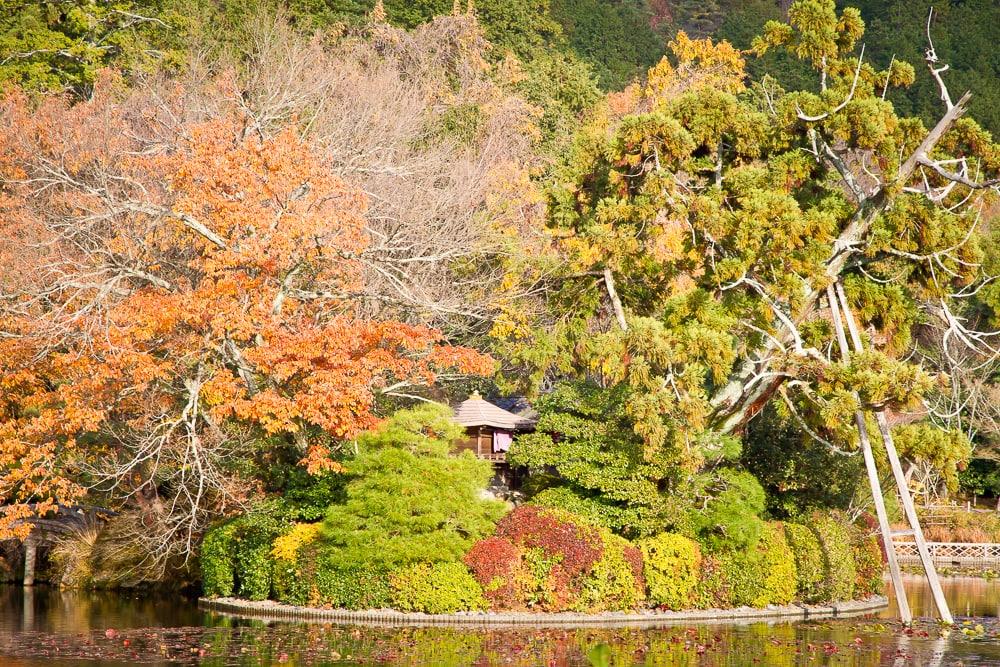 Kyoyo-Chi Pond, Ryoan-ji, Kyoto