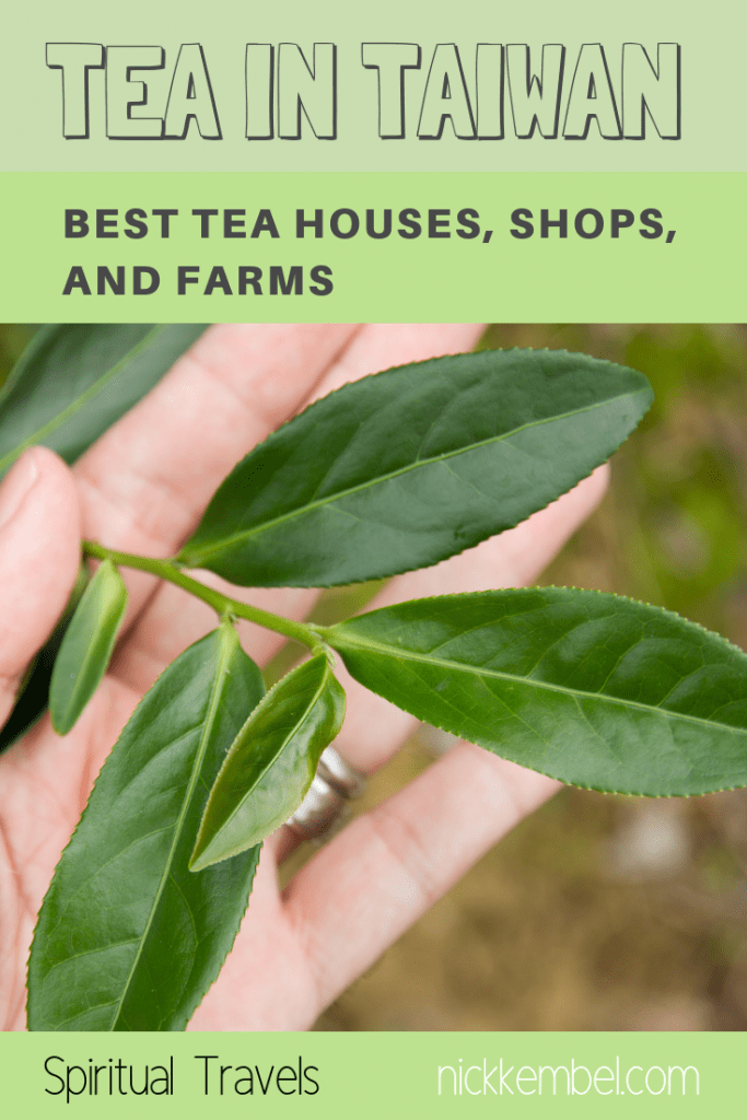 Learn more about tea in Taiwan, including the best Taiwanese teas, how to buy tea from Taiwan, how to order tea from Taiwan, tea attractions in Taiwan, how to stay on a tea farm in Taiwan, and more #tea #taiwantea #taiwanesetea #oolongtea