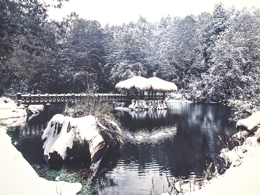 Sister ponds, Alishan in winter