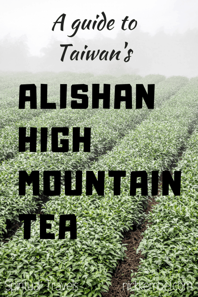 Alishan tea (aka Alishan High Mountain Tea or Alishan High Mountain Oolong Tea) is Taiwan's most famous tea, and some consider the best tea in Taiwan. Here's a complete guide to Alishan tea, ordering oolong tea from Taiwan, and visiting a tea farm in Taiwan! #tea #oolong #oolongtea #highmountaintea #alishan #alishantea #alishanhighmountaintea #taiwantea #taiwanesetea #taiwanoolongtea #wulongtea #blacktea