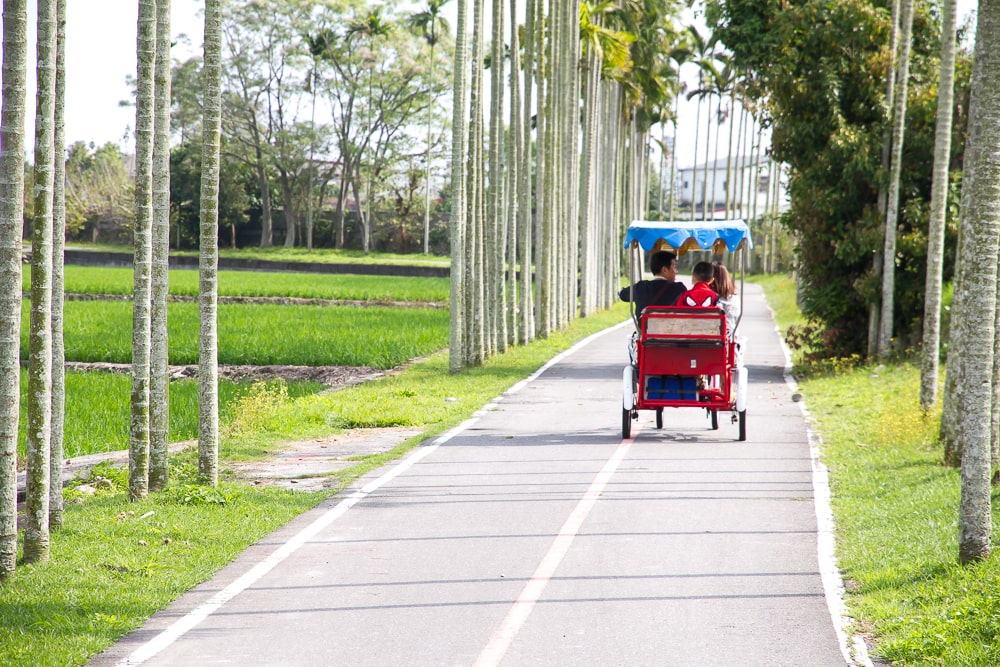 A family bicycle on the Guanshan bicycle path, Taitung, Taiwan