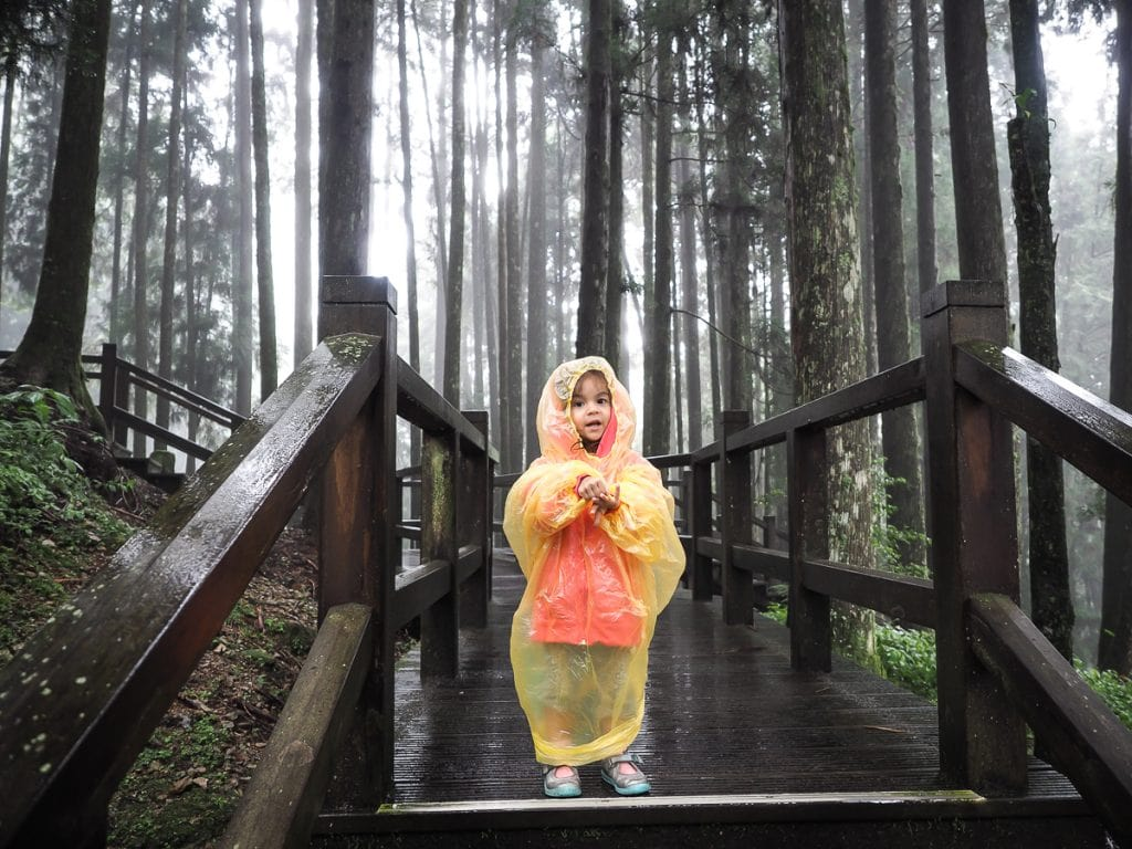Hiking in Alishan with kids