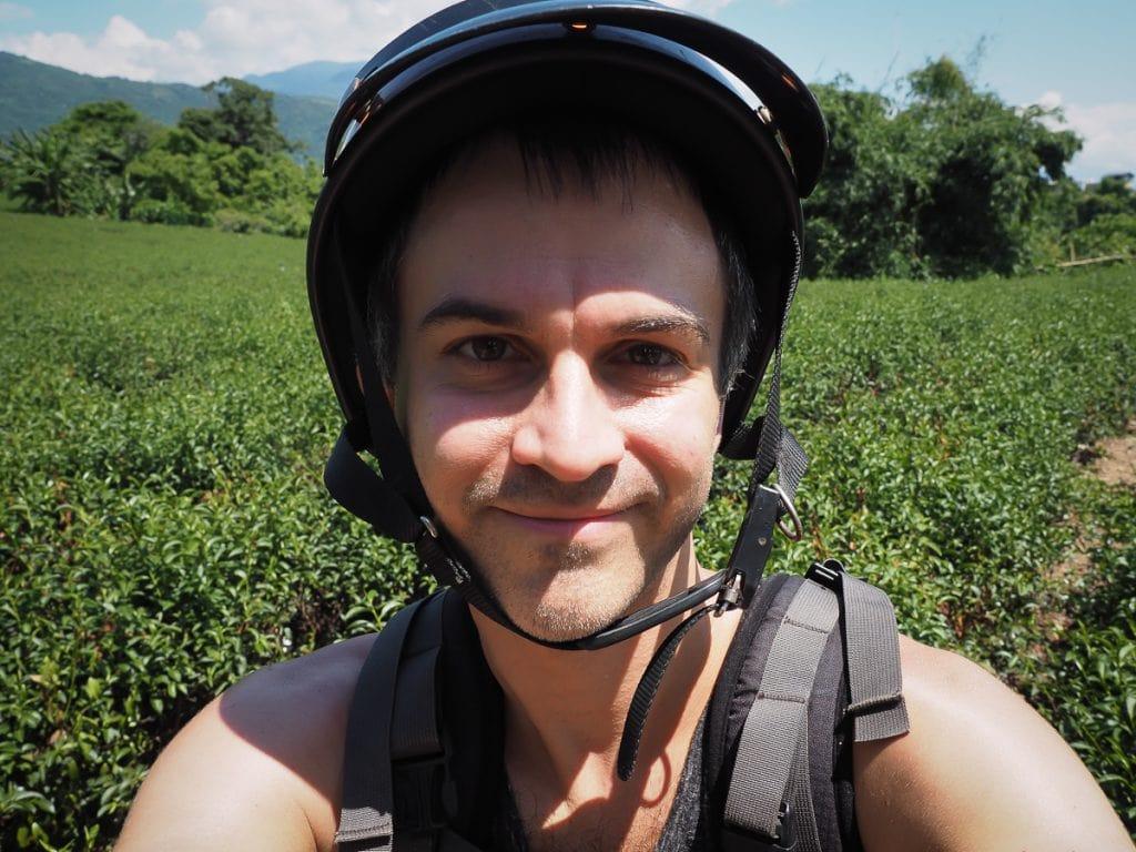 Luye tea field, Taitung