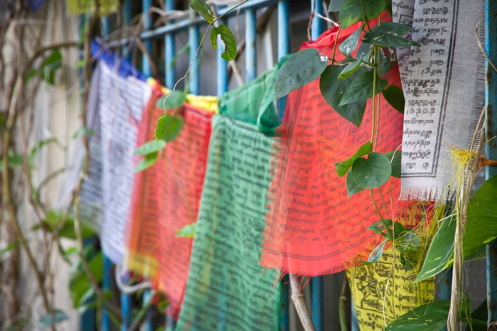 Prayer flags at Global Tea Hut
