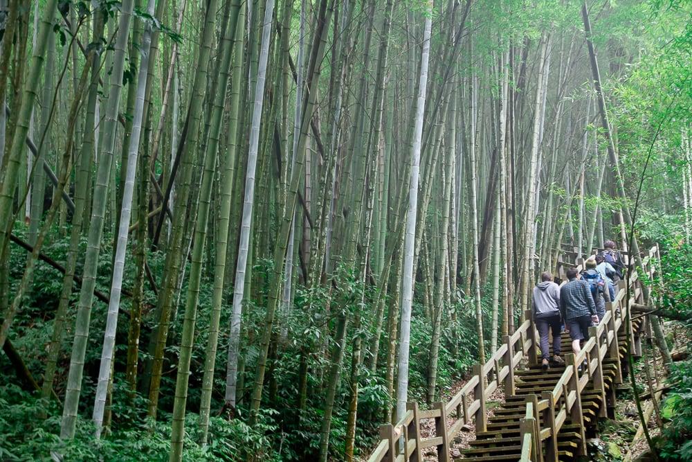Hiking the Ruitai Historic Trail from Ruili to Taihe near Fenqihu, Alishan