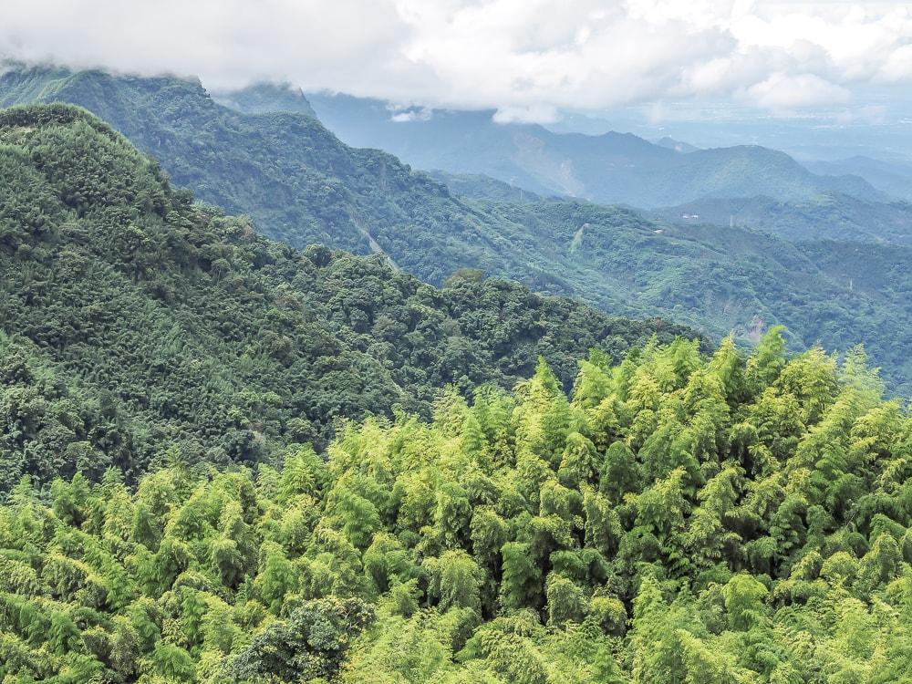 Mountainous view in Alishan