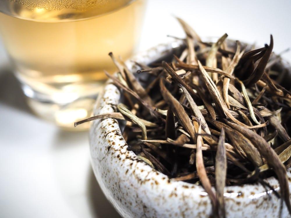 Tea in Thailand: An Interview with John Bickel, Thailand-based Tea