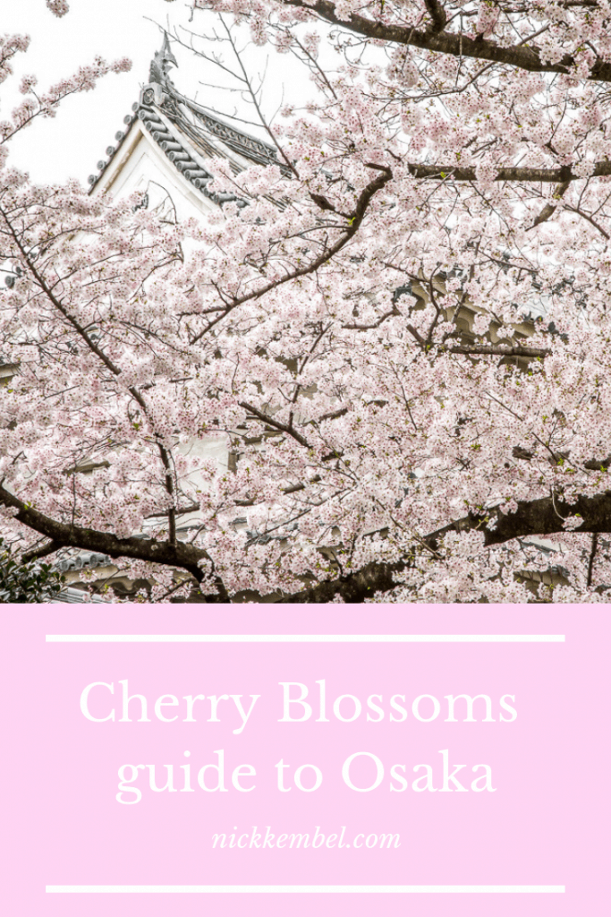 A guide to cherry blossoms in Osaka, Osaka cherry blossoms, where to see cherry blossoms in Osaka, kyoto cherry blossoms, where to see cherry blossoms in kyoto, japan cherry blossoms, where to see cherry blossoms in Japan, Nara cherry blossoms, where to see cherry blossoms in Nara, best places to see cherry blossoms in Japan #cherryblossomsOsaka #osakacherryblossoms #japancherryblossoms #wheretoseecherryblossomsinjapan #naracherryblossoms #japan #osaka #sakura #osakasakura