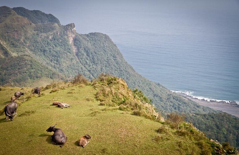 Caoling Historic Trail, Taiwan