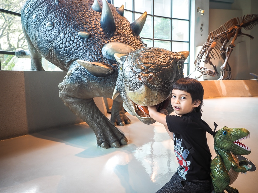 Dinosaurs at Taichung Museum of Natural Science