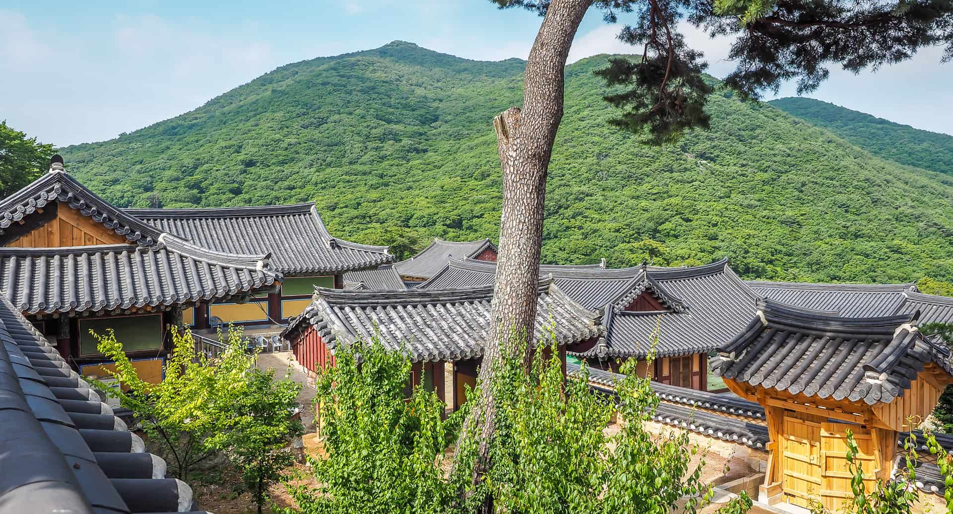 Doing a Busan temple stay at Beomeosa Temple