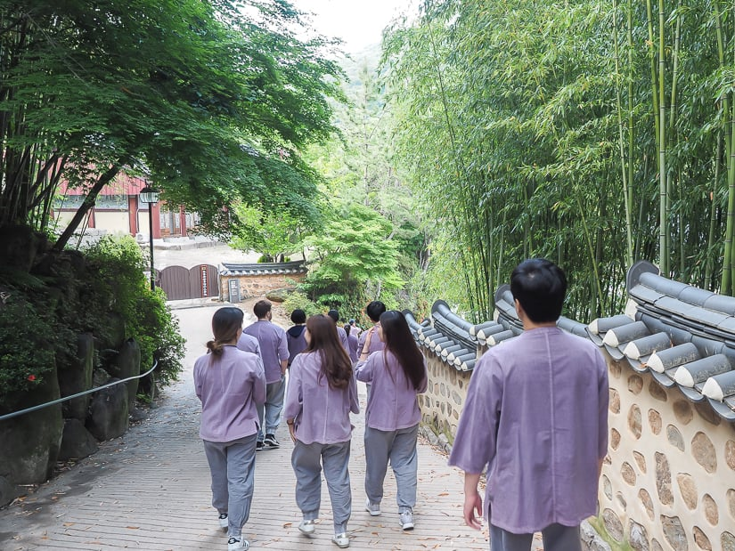 Beomeosa temple stay participants walking down a path at Beomeosa.