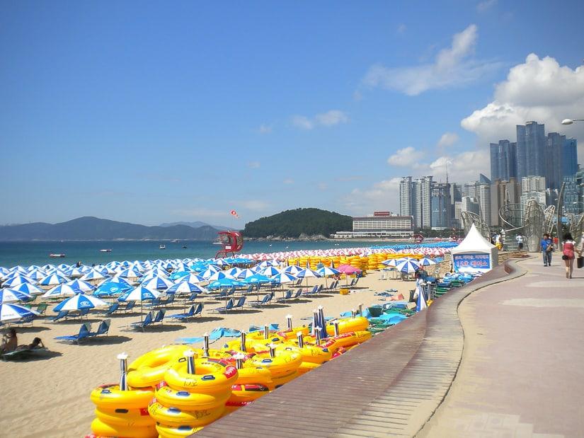 Summer beach umbrellas on Haeundae Beach