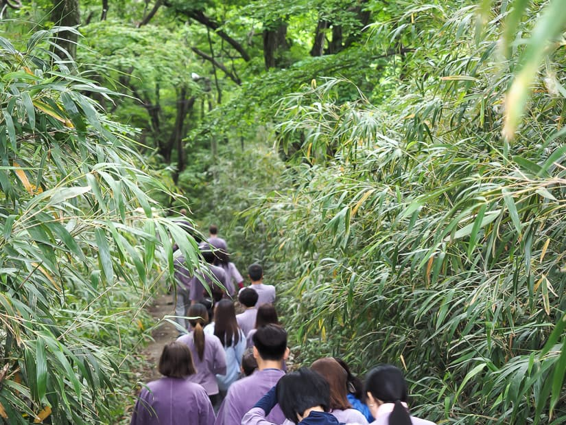 Temple stay participants going for a morning hike to Cheongnyeonam Hermitage