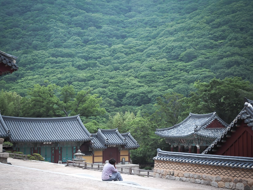 Single temple stay guest admiring scenery at Beomeosa