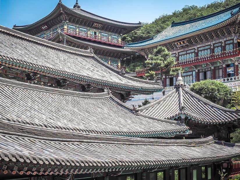 Roof of Samgwangsa Temple