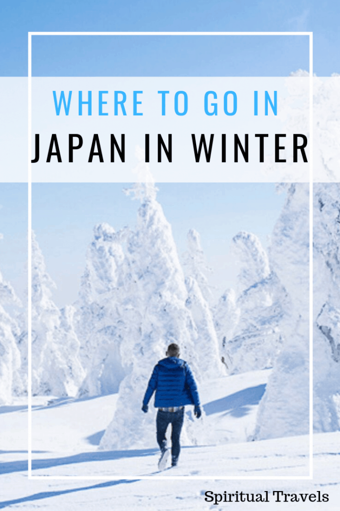 A detailed guide to the best places to go in Japan in winter | where to go in japan in winter | winter in japan | japan in november | japan in december | japan in january | japan in february | snow in japan | places to visit in winter in Japan | japanese winter | christmas in japan | snow monkeys in japan | hot spring monkeys in japan | tokyo in winter