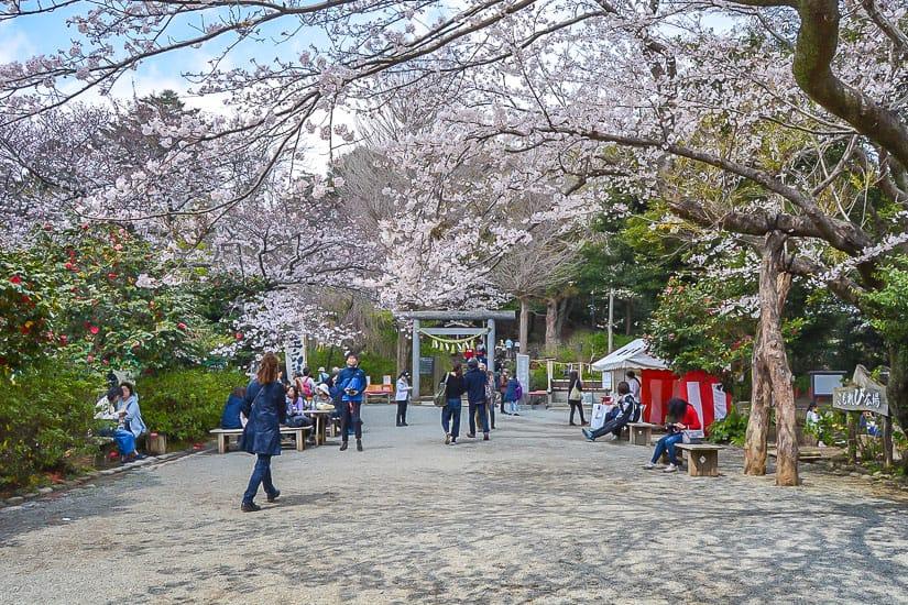 Kuzuhara Oka, Kamakura
