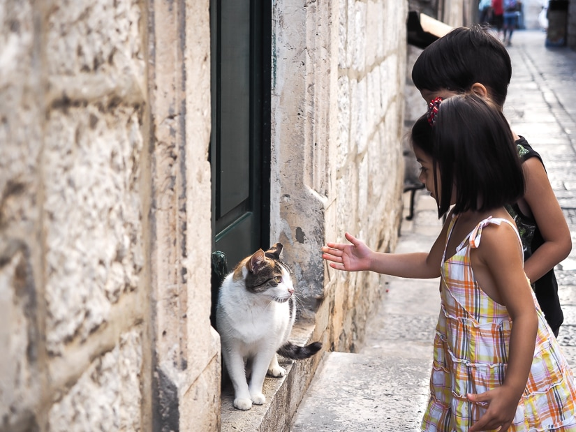Our kids petting a cat in Dubrovnik