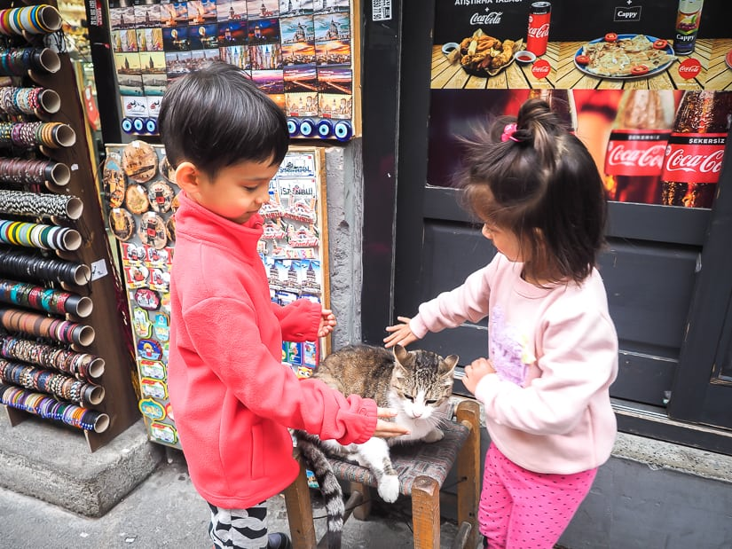 Our kids petting a cat in front of a shop in Istanbul