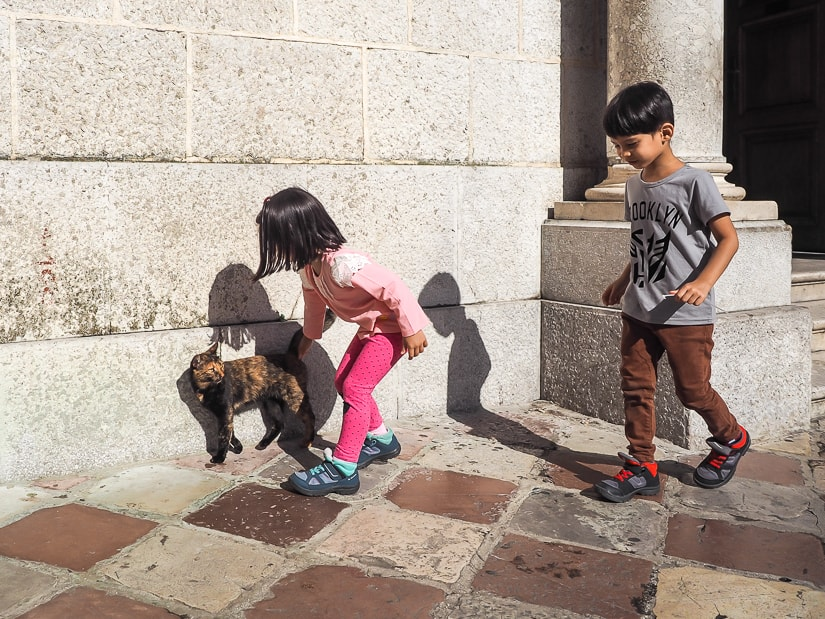 Our kids petting a cat in front of a church in Kotor