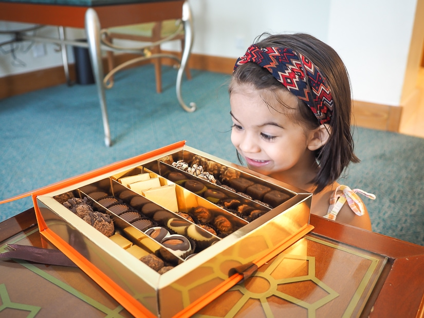 Lavender looking at a box of chocolates in our hotel room