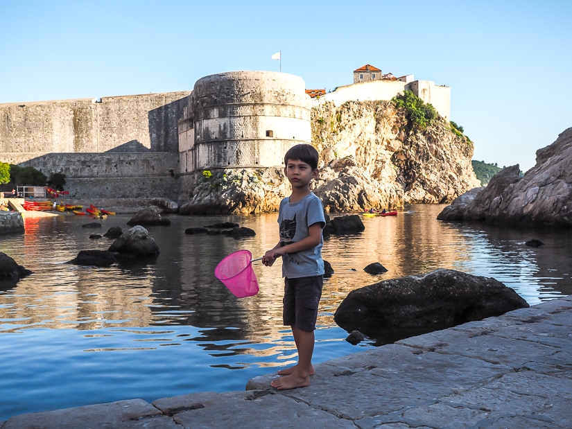 Sage with a children's fishing net at Dubrovnik West Harbor