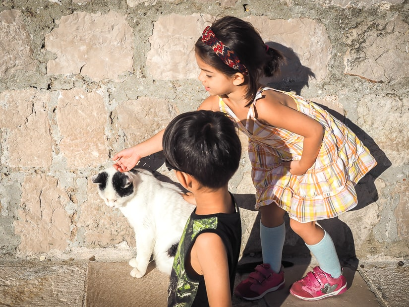 My kids petting a cat on the street in Dubrovnik