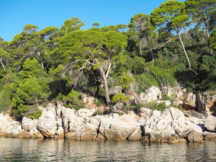 Shore of Lokrum Island
