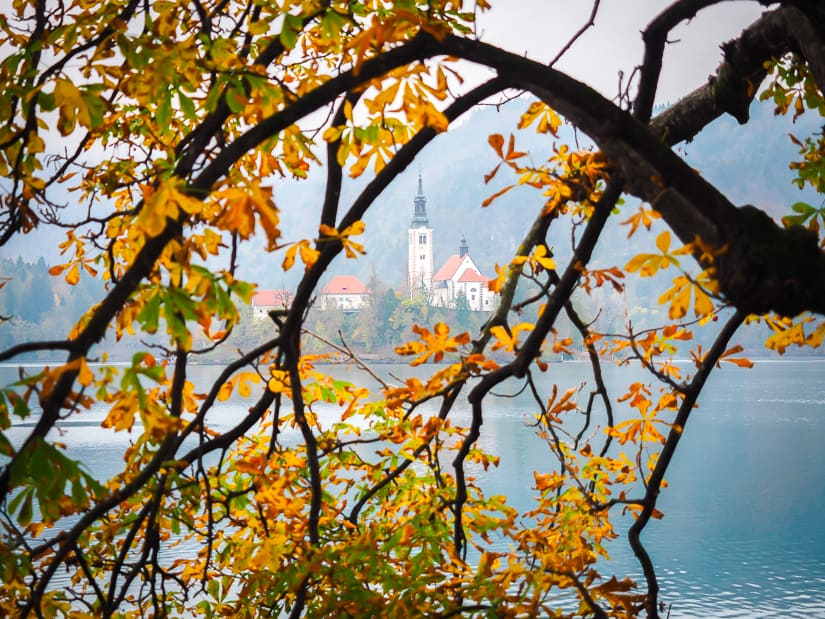 Bled Island church with colorful autumn leaves