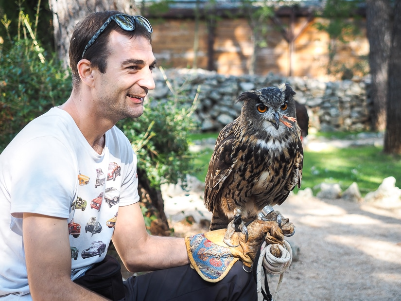 Man holding an eagle owl at the Sibenik Falconry Center