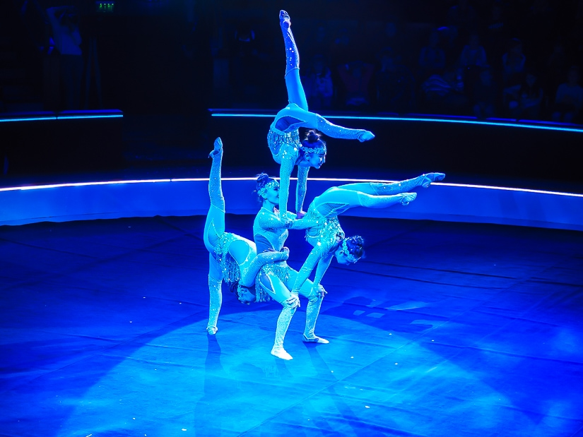 Acrobats performing at the Budapest Circus