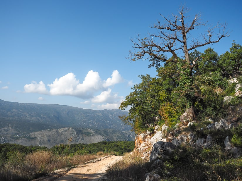 Road descending from Ostrog Monastery