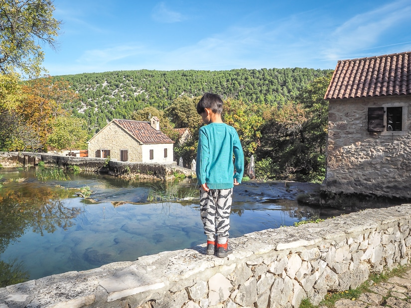 My son standing beside a pond in a Croatian village