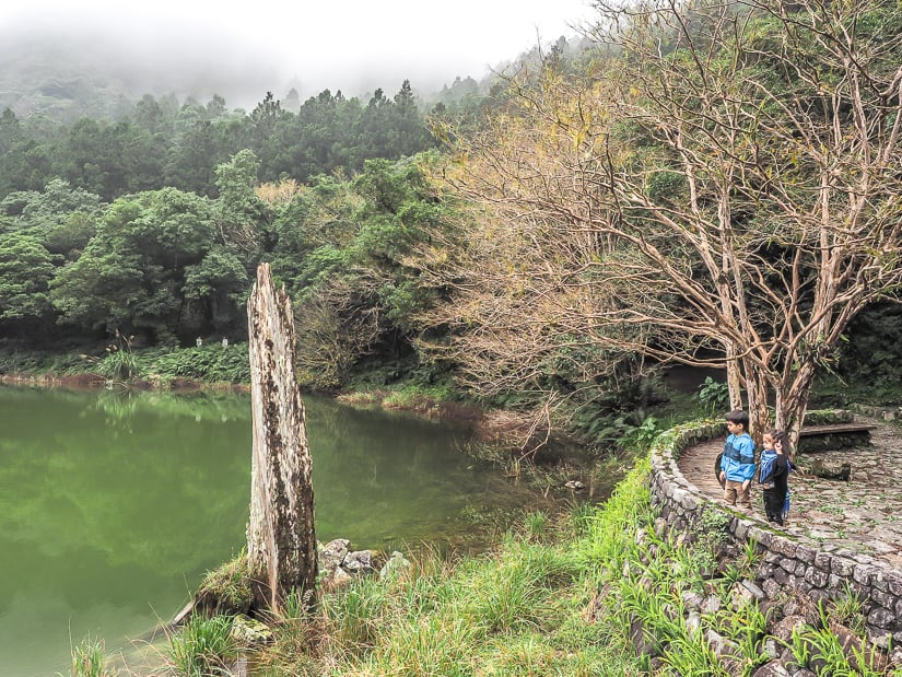 Mingchi National Forest Recreation Area, one of the best things to do in Yilan County Taiwan