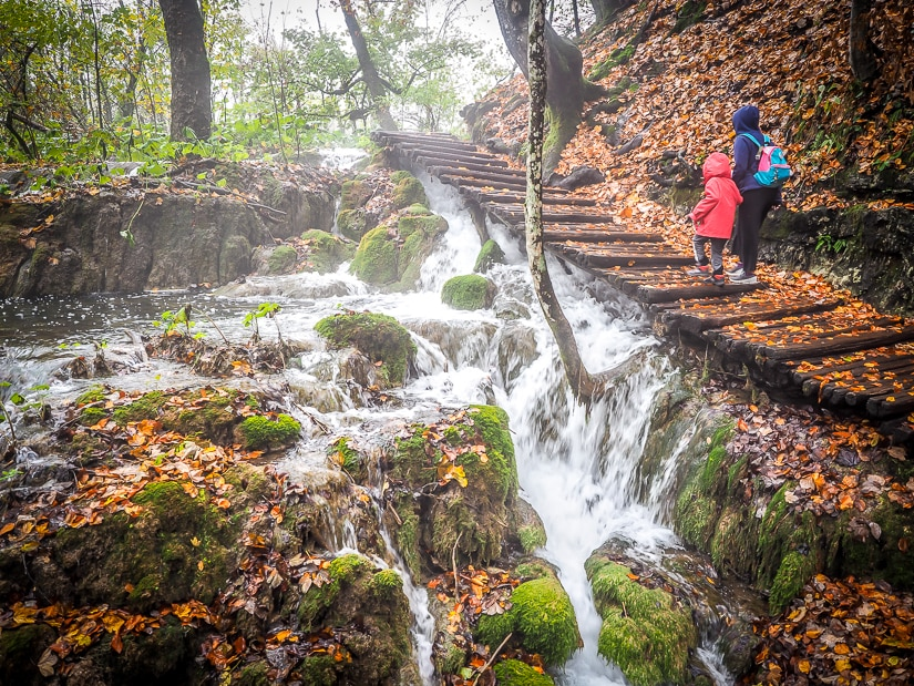 Walking through the forest with our kids in Plitvice Lakes National Park. You can visit Plitvice Lakes with a toddler or Plitvice Lakes with a baby, but you'll need a good carrier