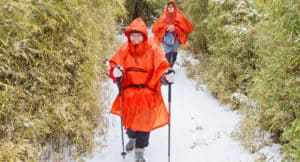 A detailed guide to taiwan in winter and where to see snow in Taiwan