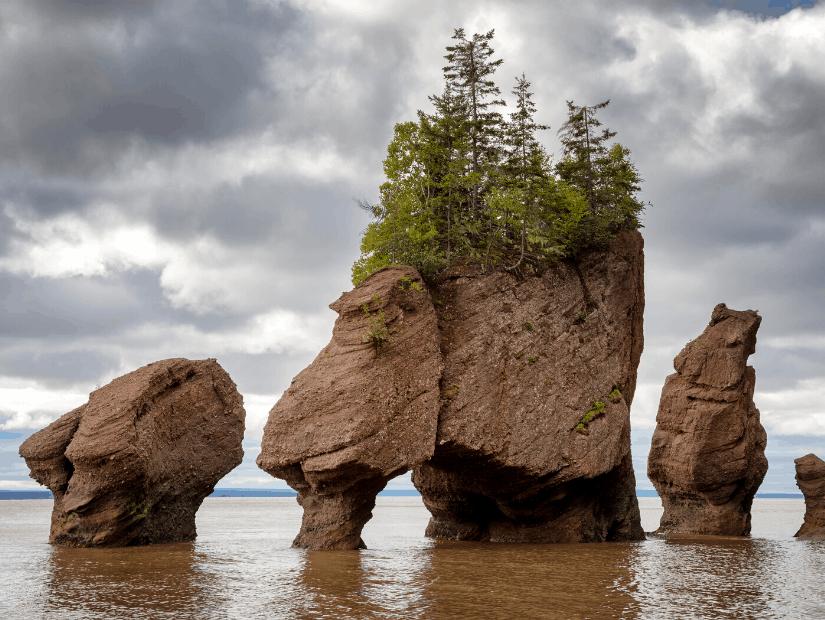 Fundy National Park, Quebec, Canada