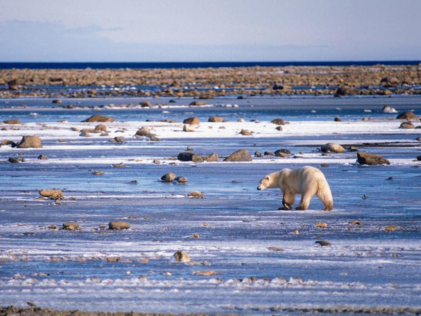 Wapusk National Park, Manitoba