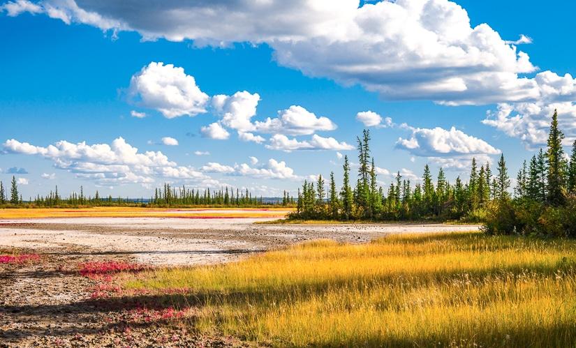 Salt Plains at Wood Buffalo National Park, the top item of my Alberta Bucket List