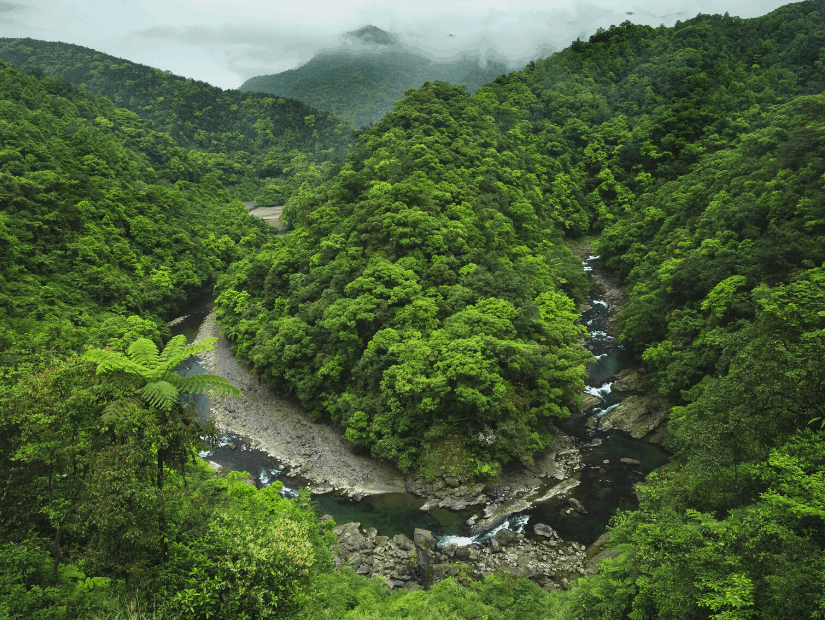 Tongluo Trail, one of the best hikes in Wulai