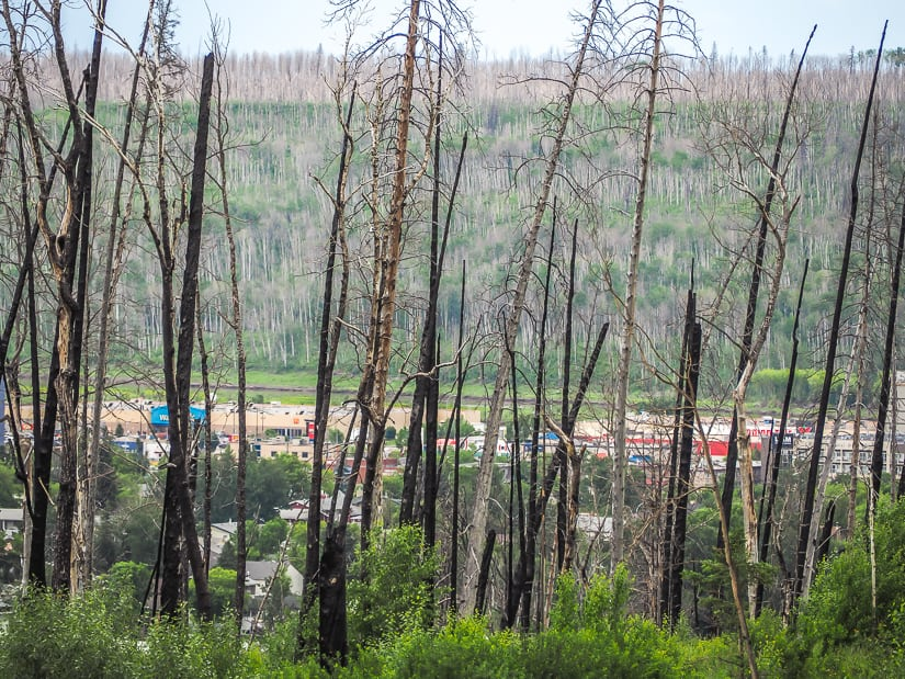 Beacon Hill Lookout Point, which offers one of the best views of Fort McMurray